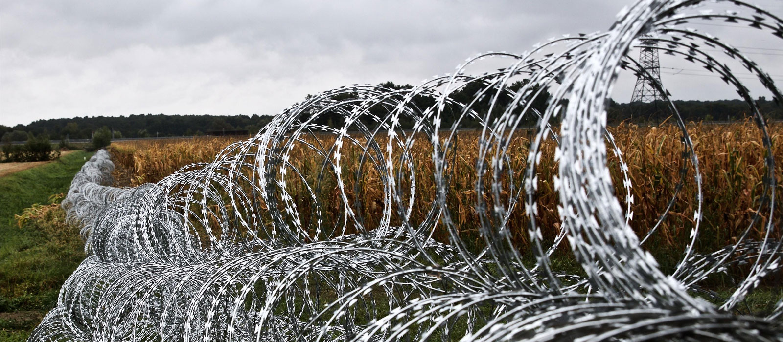 Concertina Wire Manufacturer